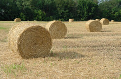 Straw rolls Royalty Free Stock Photography