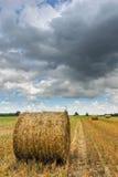 Straw rolls on a stubble field Stock Photos