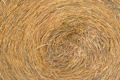 Straw rolls texture Stock Images
