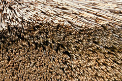 Straw Roof Stock Images