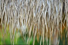 Straw roof background Royalty Free Stock Photos