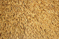 Straw roof background Royalty Free Stock Photography