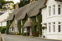 Straw roof cottage with vine at St. Mawes, Cornwall Royalty Free Stock Photography