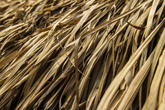 Straw roof 2 Royalty Free Stock Photography