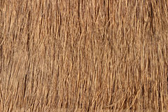 Straw Roof Texture for Background. Straw roof texture for a background image royalty free stock images
