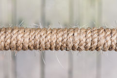 Straw rope. Details of straight straw rope Royalty Free Stock Photo