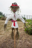 Straw scarecrow Royalty Free Stock Image