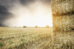 Straw square bale on field with sunset cloudy  sky. Nature background Royalty Free Stock Images