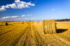 Straw stack. Stack the straw which have remained after harvest wheat Stock Photos