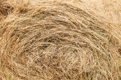 Straw. Stack background, backgrounds stock photos
