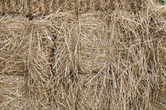Straw stack fodder background Royalty Free Stock Photos