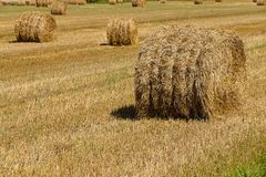 Straw stack Royalty Free Stock Image