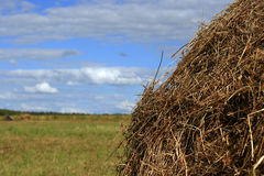 Straw stack sky background Royalty Free Stock Image