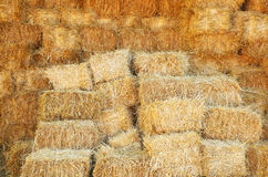 Straw stacked background Royalty Free Stock Photo