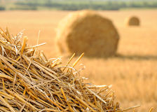 Straw stacks Royalty Free Stock Photography