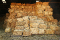 Straw stacks in barn Royalty Free Stock Photos