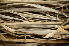 Straw stems. Macro picture of dried straw stems Royalty Free Stock Photos
