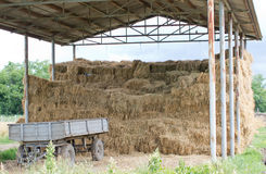 Straw storage Stock Image