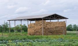 Straw storage Stock Photography