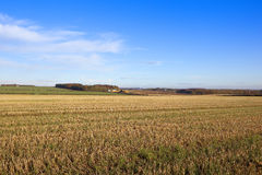 Straw stubble field with farm Stock Photo