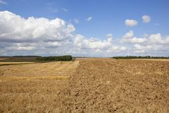 Straw stubble and plow soil Royalty Free Stock Photos