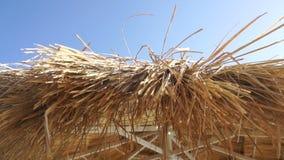 Straw Sun umbrella on a bright sunny day. Close up of straw Sun umbrella on a bright sunny day stock video
