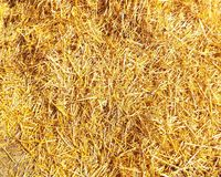 Straw. The surface of a straw bale Stock Photo