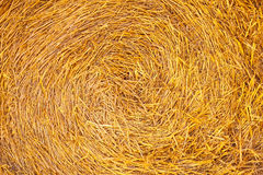 Straw teture Royalty Free Stock Photos