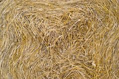 Straw texture. Dry straw in roll - texture stock photos