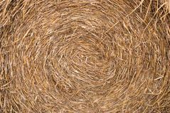 Straw texture. Texture of straw bale roll stock photo