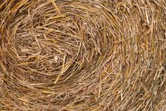 Straw texture. Texture of straw bale after harvest stock photography