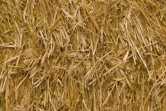 Straw texture. Baled hay in even light stock photos
