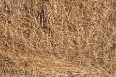 Straw texture background. Detail of straw round bale, straw textured background royalty free stock photography