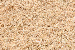 Straw texture. The Straw texture for background royalty free stock photography