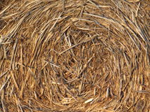 Straw Texture Background remolinado Fotografía de archivo libre de regalías