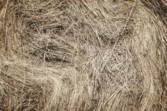 Straw texture. Royalty Free Stock Images
