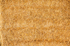 Straw texture Stock Photo