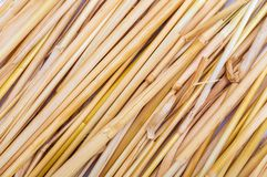 Straw texture collection of vegetable and natural fibers. Foreground stock photography