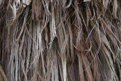 Straw (Texture) Royalty Free Stock Photos