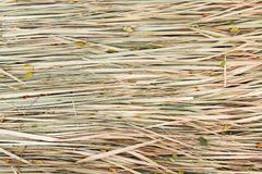 Straw textured. Stock Photography