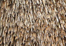 Straw thatch on a roof Royalty Free Stock Photos