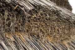 Straw thatching closeup Stock Image