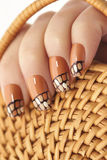 Straw twisted manicure. Stock Photography