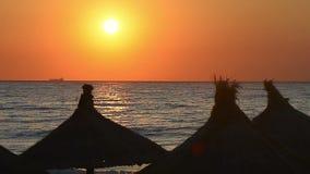 Straw Umbrella Silhouette on Beach. Idyllic sunrise at seaside, straw umbrella silhouette on beach stock video footage