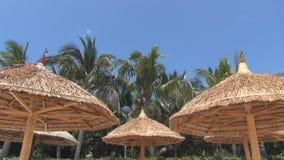 Straw umbrellas against blue sky stock footage