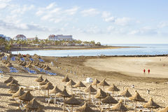 Straw umbrellas and loungers on the Playa de Las Americas, Tener Royalty Free Stock Photos