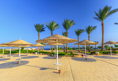 Straw umbrellas and sunbeds on the wonderful tropical beach. Royalty Free Stock Photography
