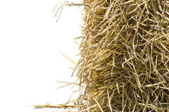Straw vertical half. Straw position put on right and vertical half stock photography