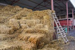 Straw in the village yard Royalty Free Stock Photos