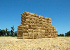 Straw Wall. A wall made of straw bundles Royalty Free Stock Photography